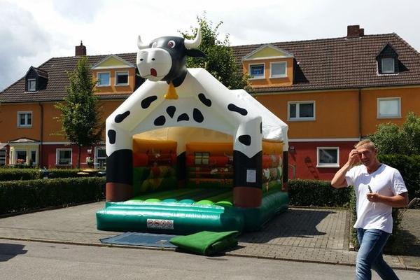 Hüpfburg - Kuh 4x5m