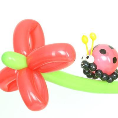 Blume und Marienkäfer